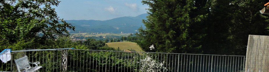 SUMMER OFFER 2016 – Agriturismo Corzano in Mugello Area