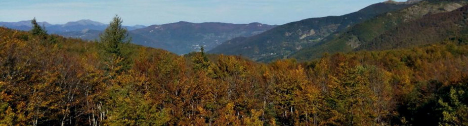 Autumn offer 3 nights for 2 people in a Double Room in the farm Corzano in  Mugello